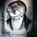 Profile picture of Mr.プロトペラヘ